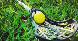 a women's lacrosse stick laying in grass with a standard regulated equipment lacrosse ball in the pocket